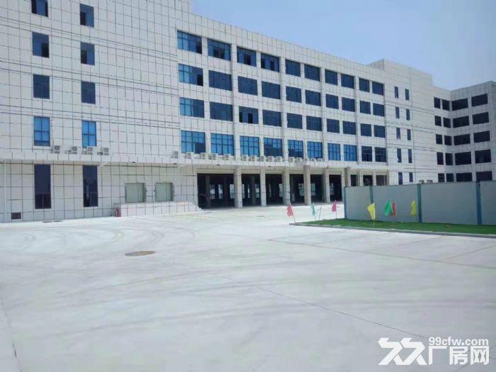 翔安洪溪南路厂房5000平米出租-图(2)