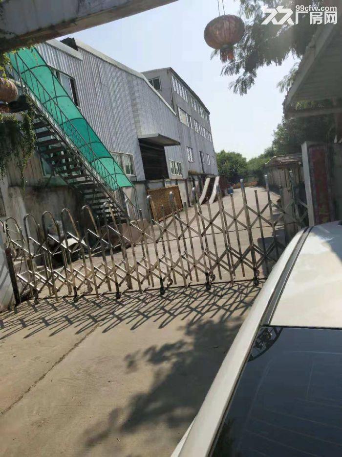杏林前场钢构厂房4500平米出租独门独院-图(1)
