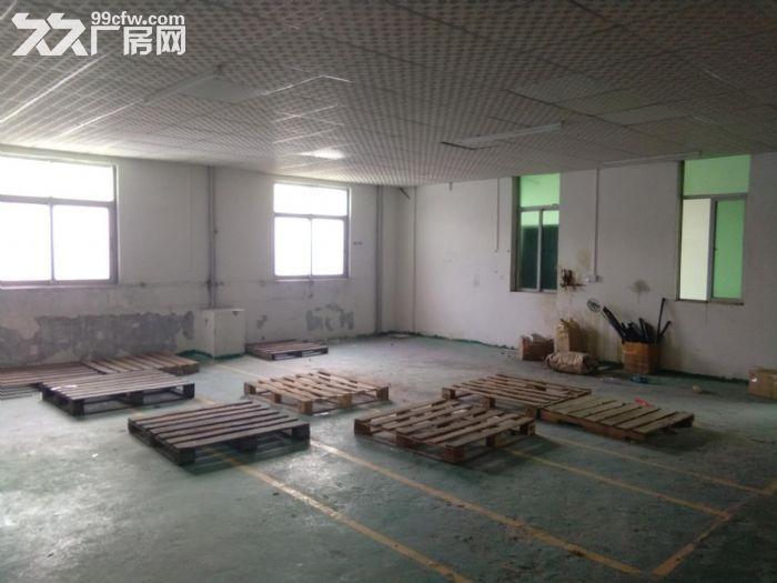 凤岗油甘埔刚空出楼上精装修厂房出租600平方形象好-图(2)