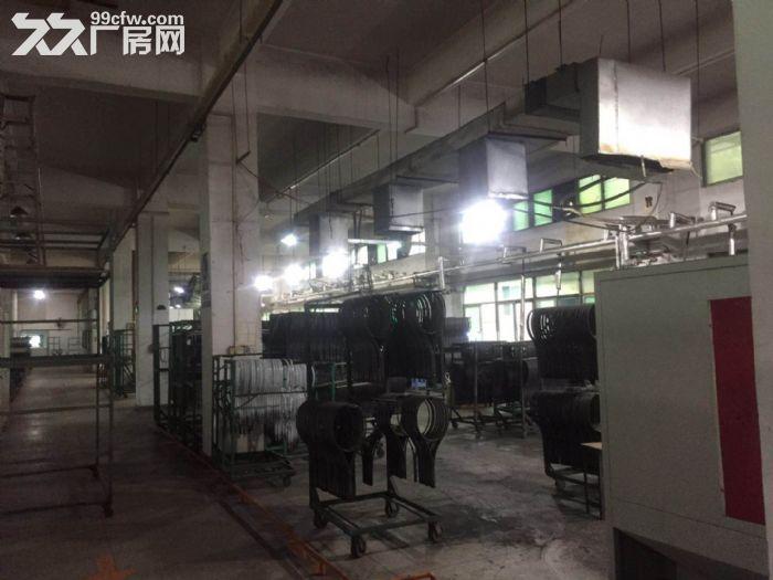 凤岗竹塘工业园出租花园式厂房两层3700平,可分租-图(3)