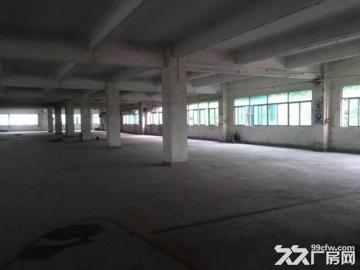 凤岗竹塘工业园出租花园式厂房两层3700平,可分租-图(4)