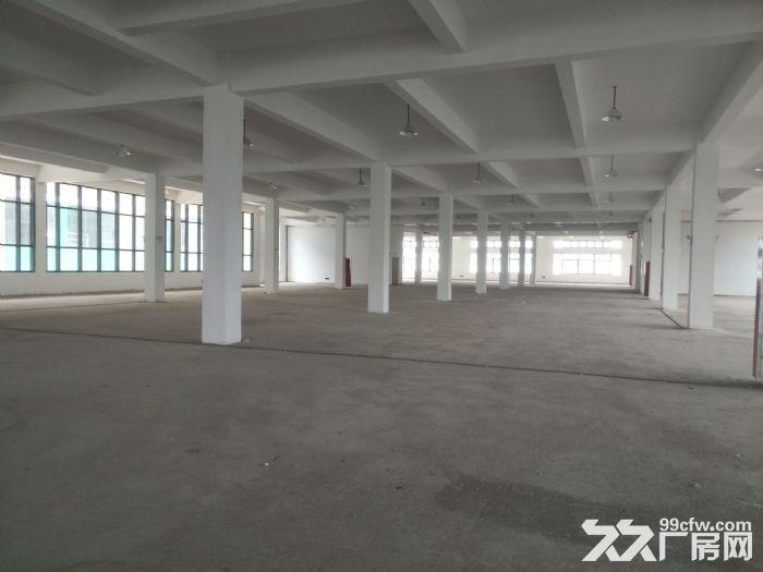 湖东全新标准厂房2500平米出租可分租-图(2)