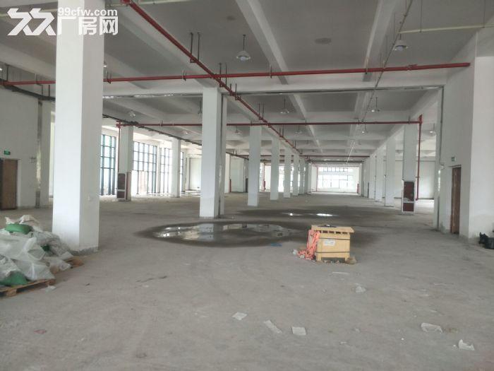 湖东全新标准厂房2500平米出租可分租-图(4)