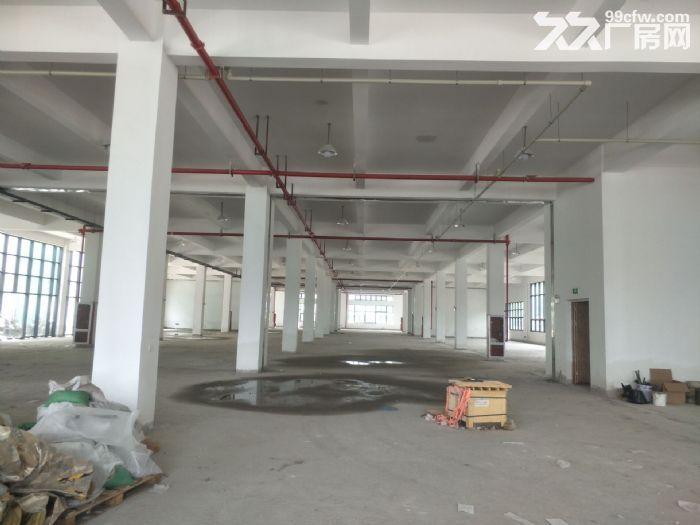 湖东全新标准厂房2500平米出租可分租-图(3)