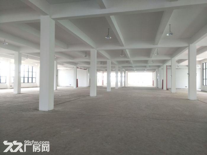 湖东全新标准厂房2500平米出租可分租-图(5)