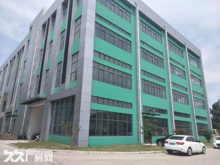 湖东全新标准厂房2500平米出租可分租-图(6)