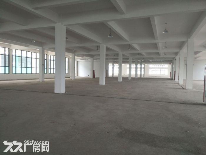 昆山开发区4200平米独栋三层厂房出租-图(1)