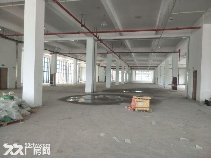昆山开发区4200平米独栋三层厂房出租-图(3)