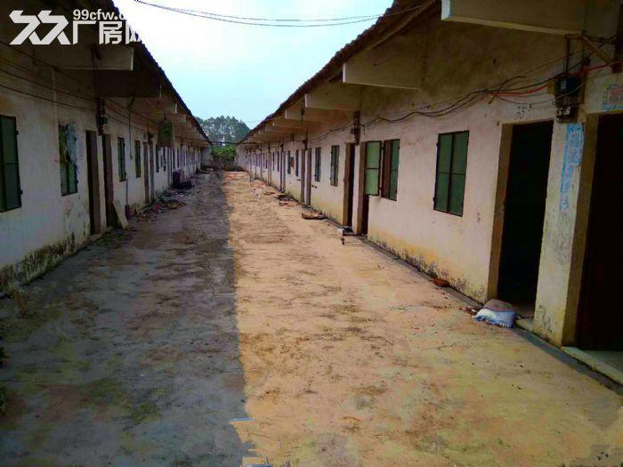 从化鳌头龙星工业园3亩土地1800平方房屋永久转让-图(6)