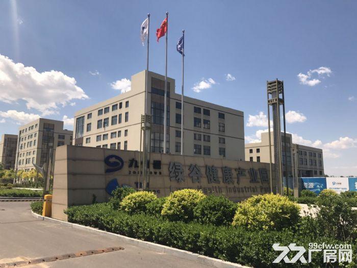 正规医药产业园出租出售有环评赠送500平露台-图(2)
