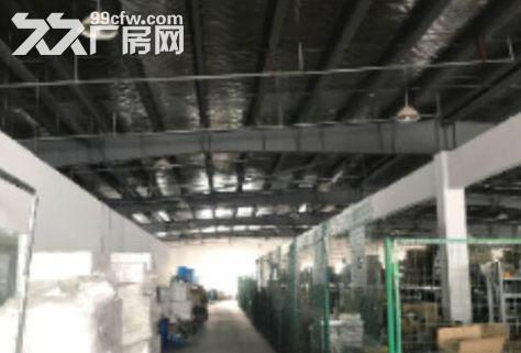 出租新区旺庄双层厂房2000平欲租从速-图(1)