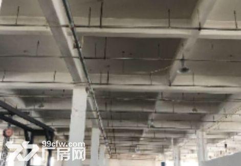 出租新区旺庄双层厂房2000平欲租从速-图(2)