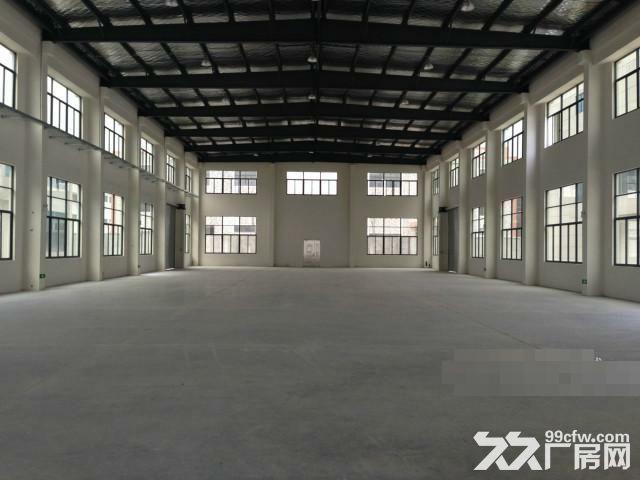 车墩独栋1900平米单层厂房出租层高11米-图(1)