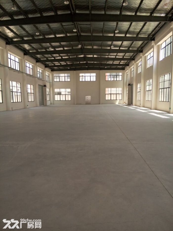 车墩独栋1900平米单层厂房出租层高11米-图(4)