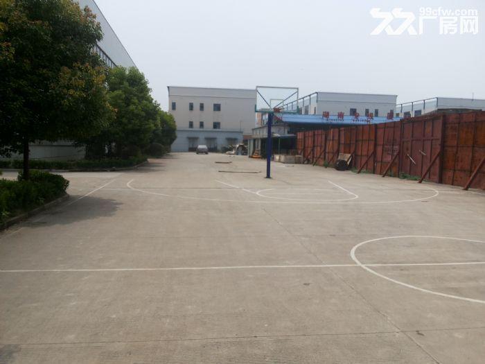 车墩全新独栋厂房出租高度14米,全单层-图(1)