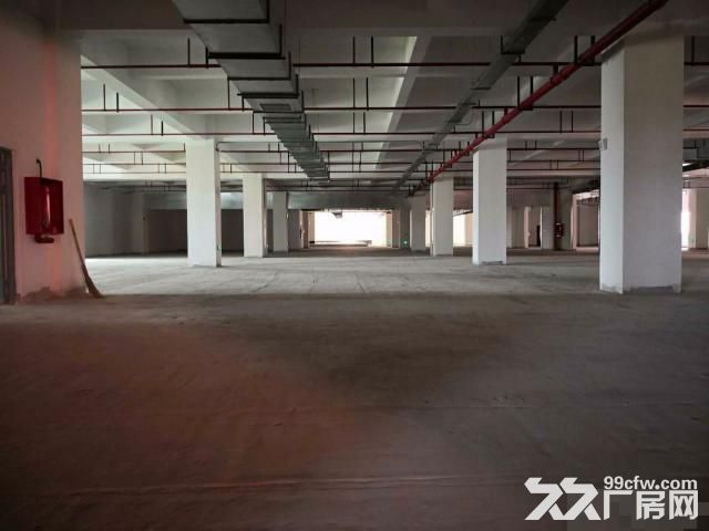 新桥专业食品园区,全新厂房,配套齐全证件齐全-图(2)