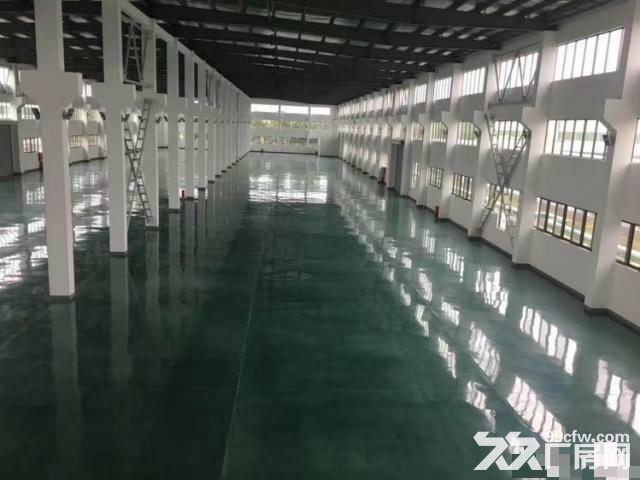 松江独院独栋厂房可租可卖,全单层一房东-图(3)