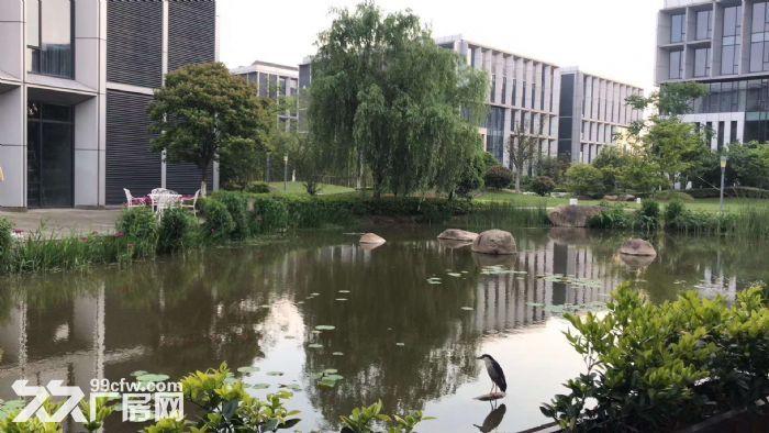 业主直招生物医药产业园5000平研发厂房104可环评-图(3)