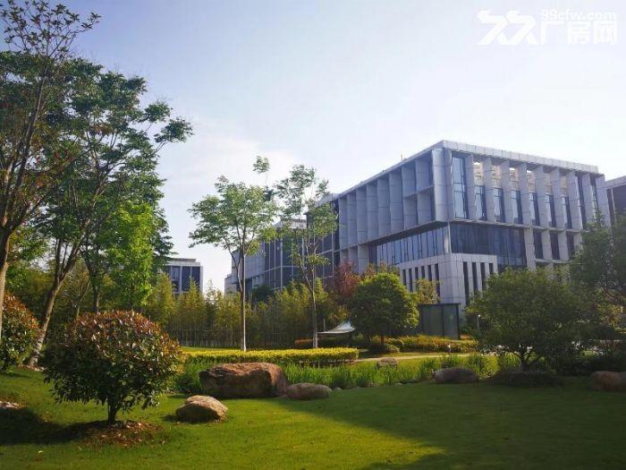 业主直招生物医药产业园5000平研发厂房104可环评-图(7)