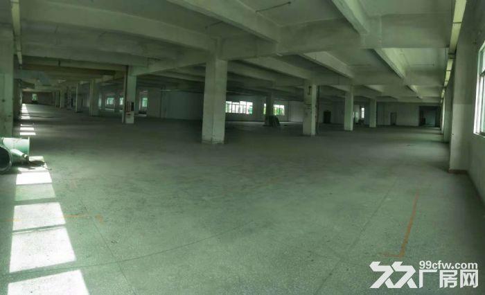 凤岗独门独院两层厂房出租5000平方,空地大便宜-图(2)