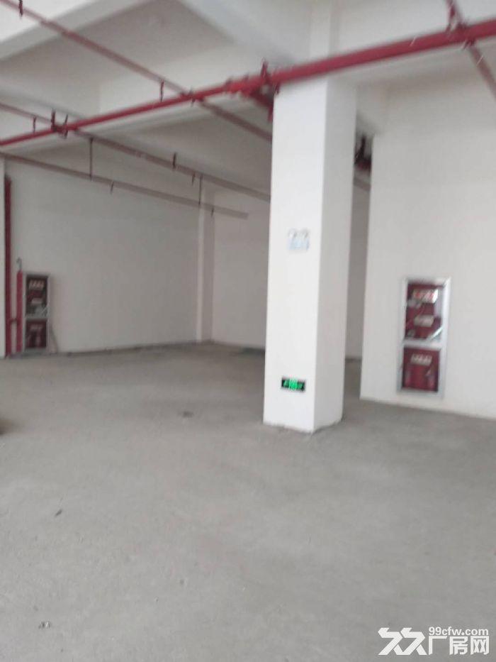 前桥路12000平标准厂房出租环境好+位置好-图(7)
