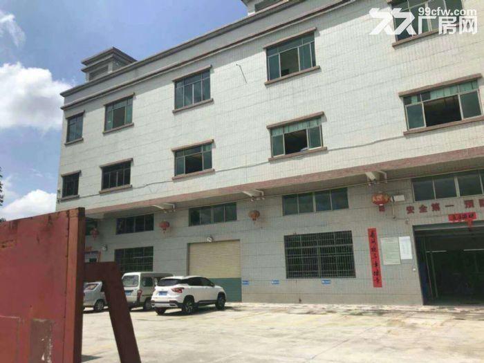 园洲标准一楼厂房1200平方,形象好-图(1)