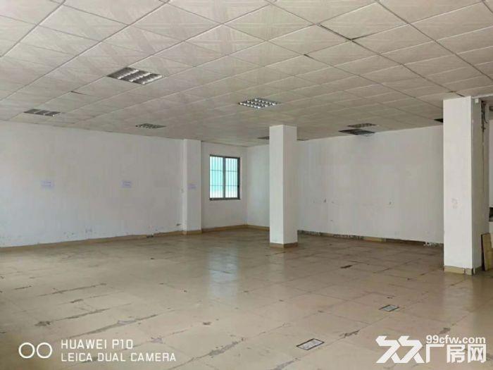 园洲标准楼房空出二楼750平方,现成装修-图(3)