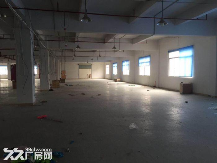 凤岗原房东精装修楼上厂房出租3600平方,形象好-图(1)