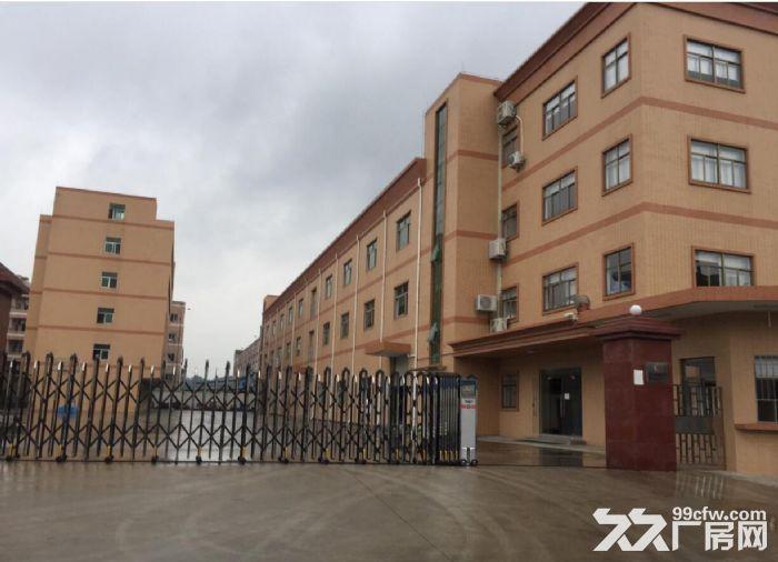 清溪土桥与横塘交界处,主干道边上独院厂房2500平-图(4)