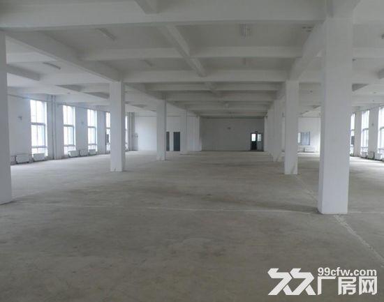 园洲标准厂房空出1650平,带办公宿舍-图(1)