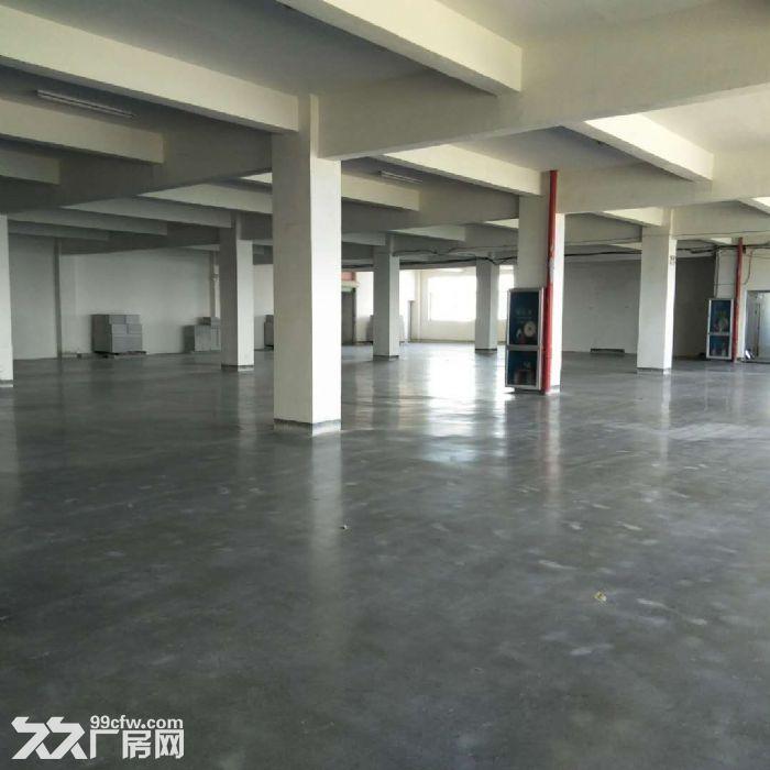 厂房办公仓库出租,住宿配套齐全,有隔断,拎包入驻-图(2)