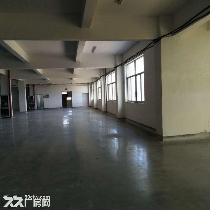 厂房办公仓库出租,住宿配套齐全,有隔断,拎包入驻-图(4)