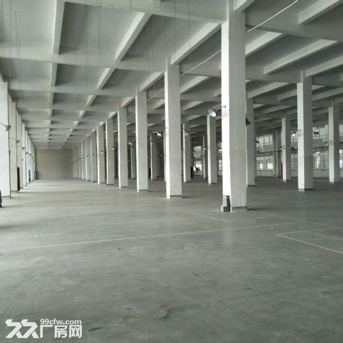 厂房办公仓库出租,住宿配套齐全,有隔断,拎包入驻-图(6)