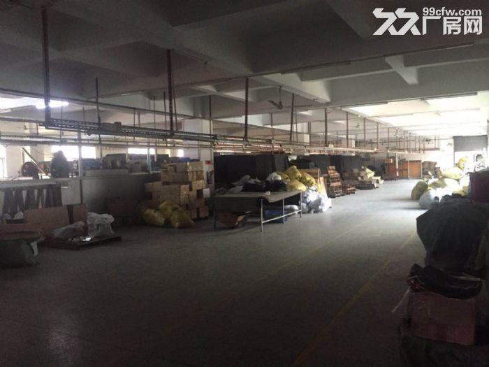 凤岗近深圳独门独院厂房出租7200平方,可分租,-图(3)