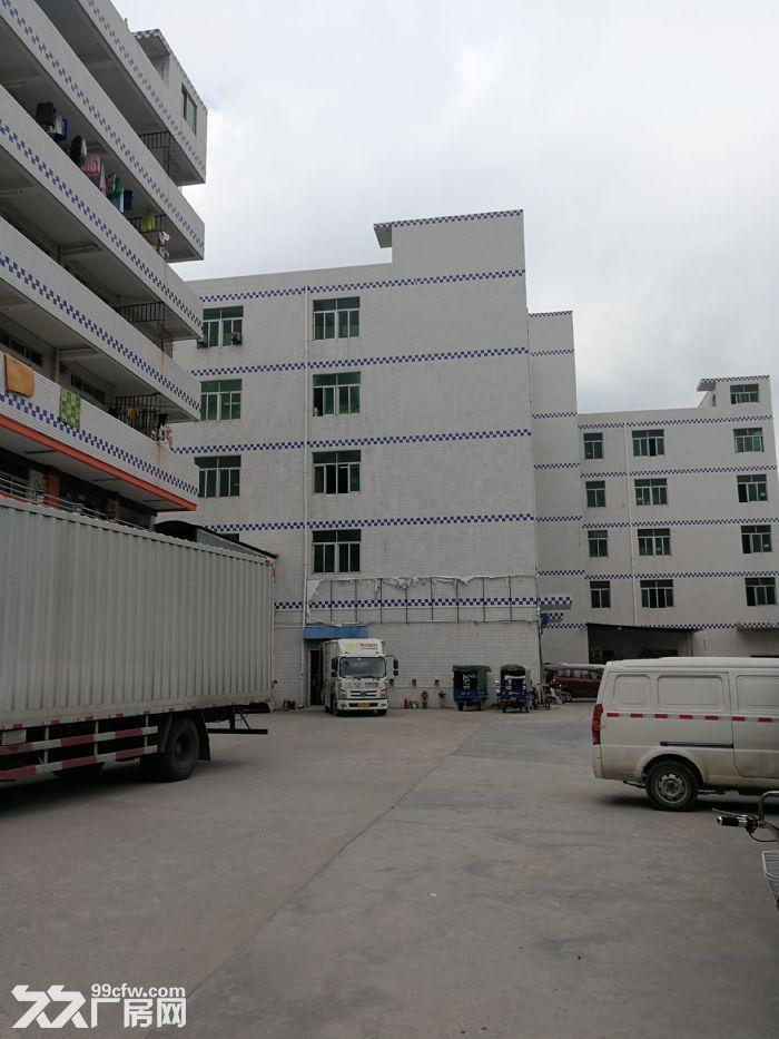 碧岭社区,电商物流厂房分租-图(1)
