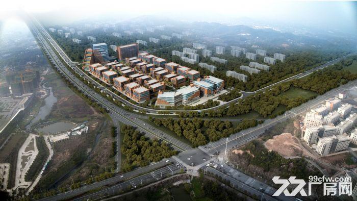 开福高新区国资开发一企一栋年内封顶-图(7)