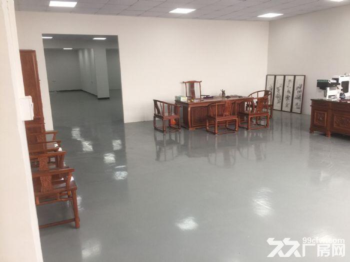 (非中介)金沙洲里水全新标准厂房出租(业主直租)超低价笋!-图(3)