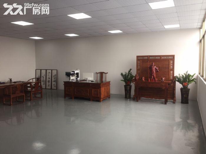 (非中介)金沙洲里水全新标准厂房出租(业主直租)超低价笋!-图(4)