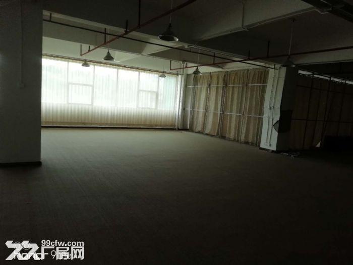 萝岗开发区东区有600平方的厂房出租-图(1)
