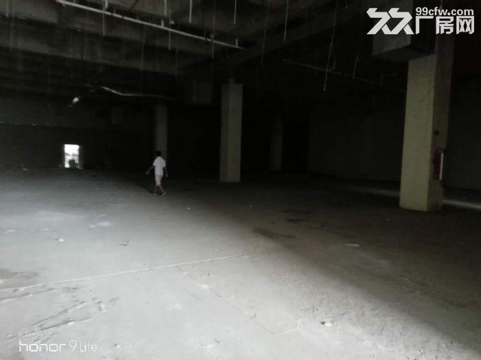 萝岗开发区现有一楼1700出租-图(1)