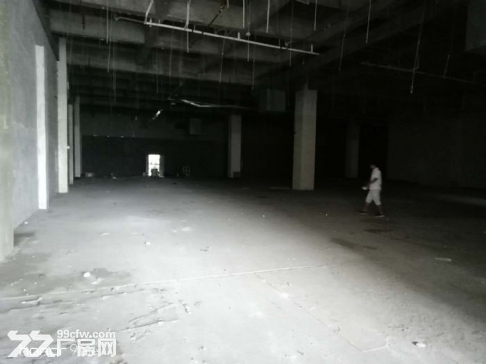 萝岗开发区现有一楼1700出租-图(3)