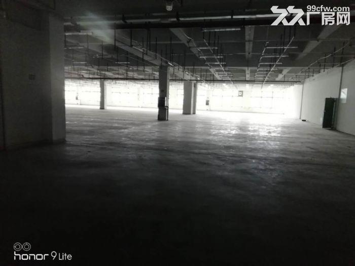 (免中介费)萝岗开发区东区现有三楼8000平方厂房-图(5)