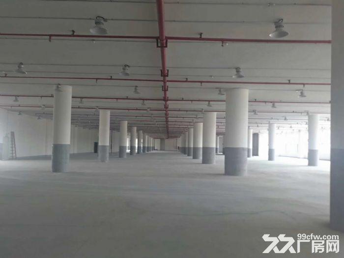 东区现有二楼6700平方厂房出租-图(3)