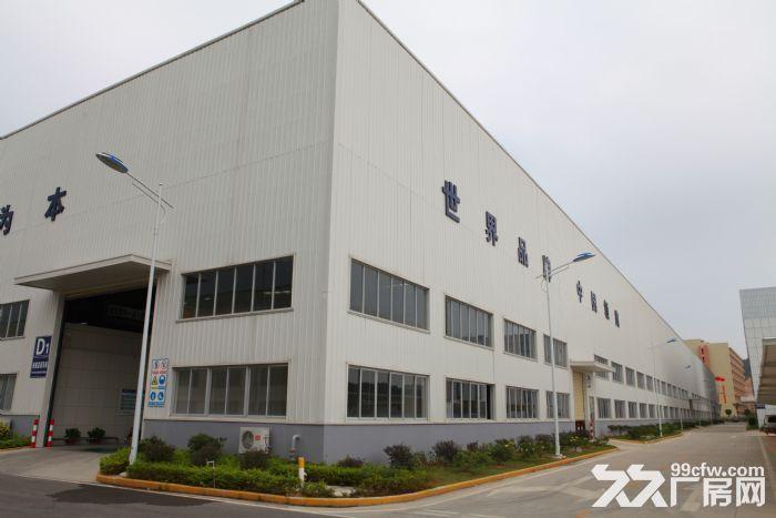 南朗华南现代中医药城钢架结构厂房出租,现成水电,价格可面议-图(1)