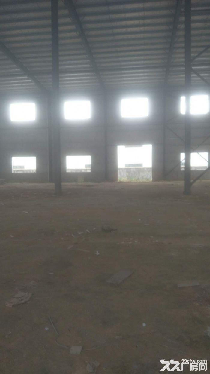 出租镇头镇3200平方钢结构-图(4)