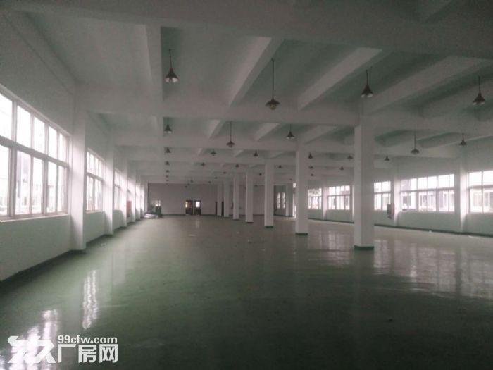 江桥电商进口食品物流装配研发仓储有产证面积可独立分租-图(3)