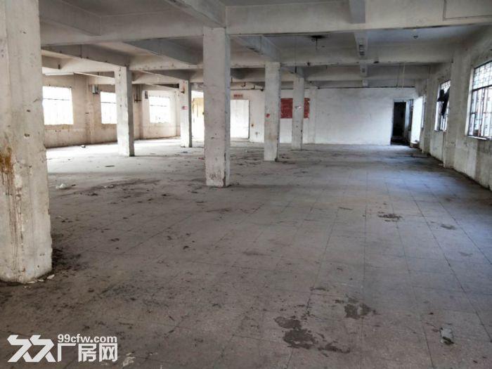 南朗建伦工业园独门独院3440方标准厂房出租-图(4)