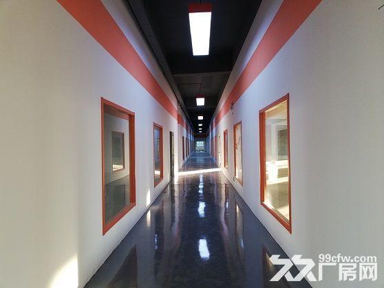 地铁口!园区600平米优质厂房、仓库出租-图(3)