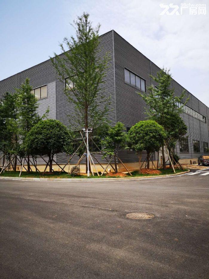出租岳麓周边普瑞大道钢结构厂房带行车-图(3)