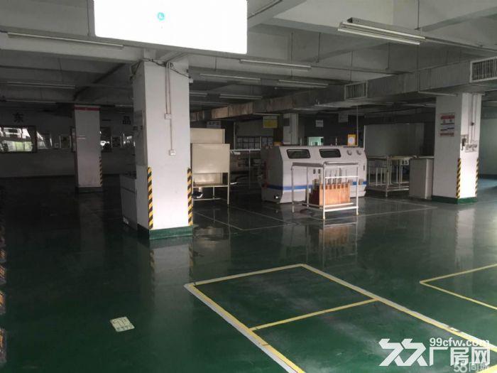 自贸区保税区超大厂房/办公室出租-图(2)